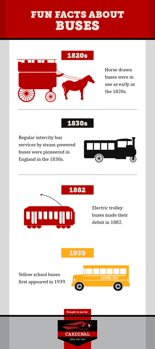FUN FACTS ABOUT BUSES !