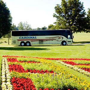 Cardinal Buses in front of Essenhaus Quilt Garden