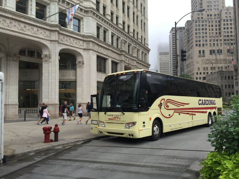 Cardinal Buses at Willis Towers Chicago